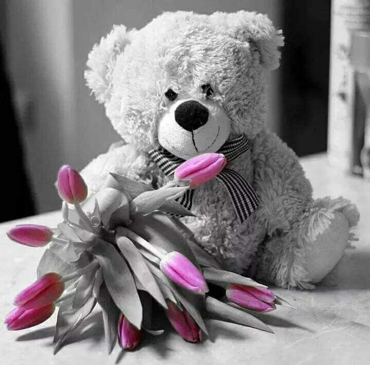 российские красивые картинки медвежонок с цветами как новость