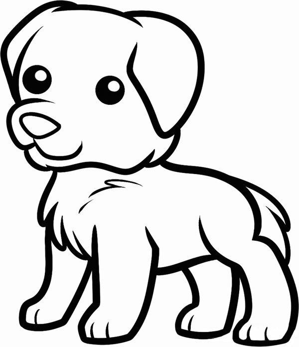 часто картинки собак рисовать легко течение долгого времени