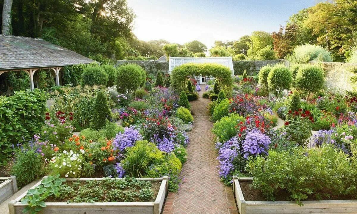 Картинки с элементами сада-огорода