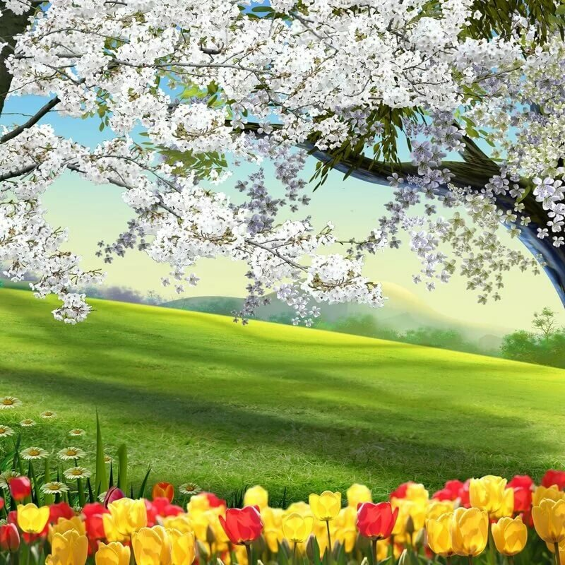 картинки про весну красивые для презентации совсем