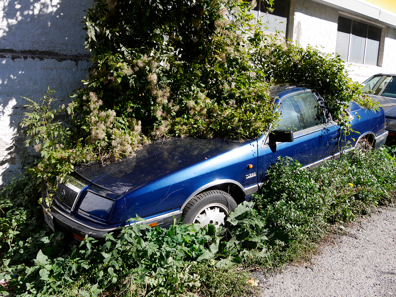 Chrysler le Baron: green or blue • ALL ANDORRA