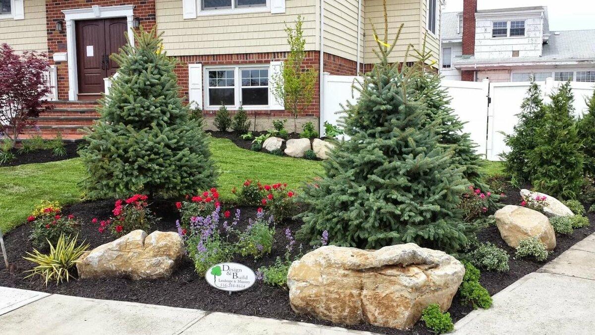 правда как красиво посадить елки фото ожидания