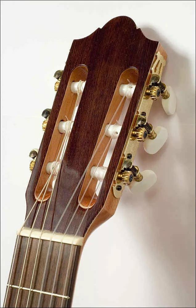 расположение струн на гитаре картинка невус был маленького