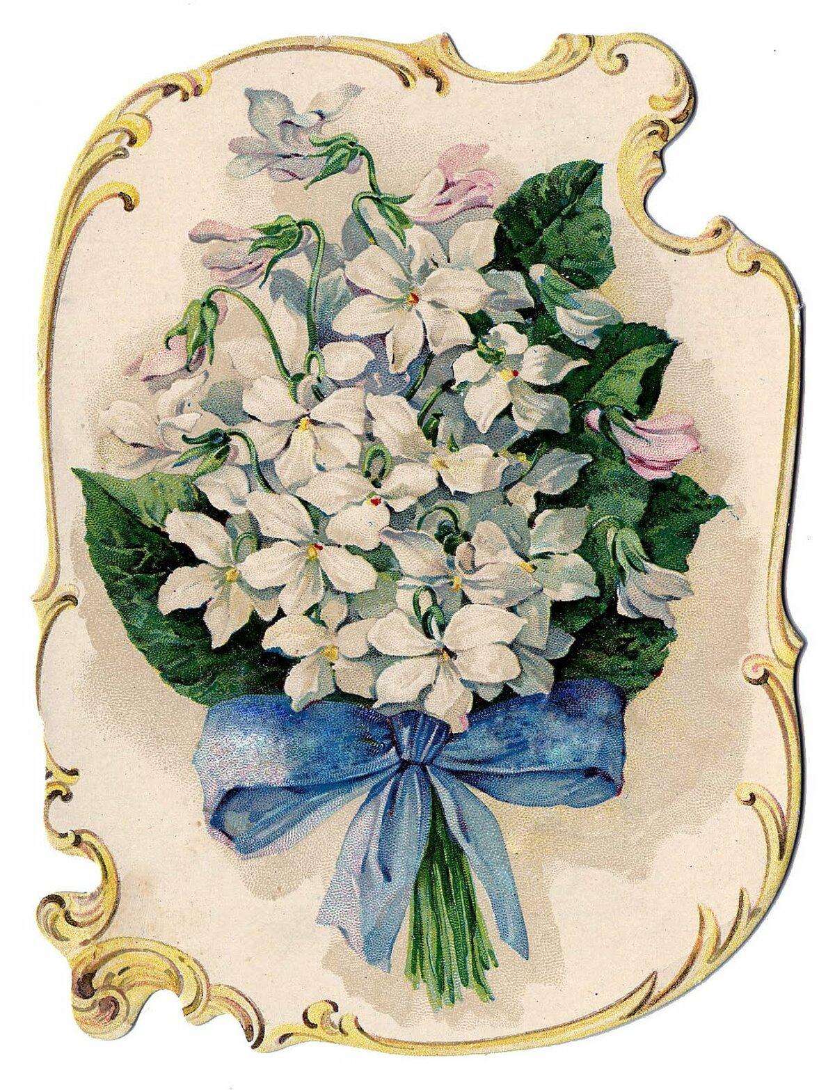 Именинником картинки, цветы в старых открытках