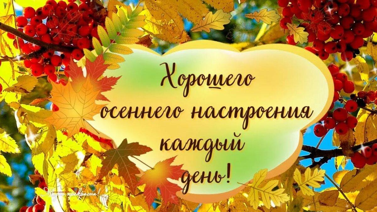 Осенние открытки хорошего дня и настроения