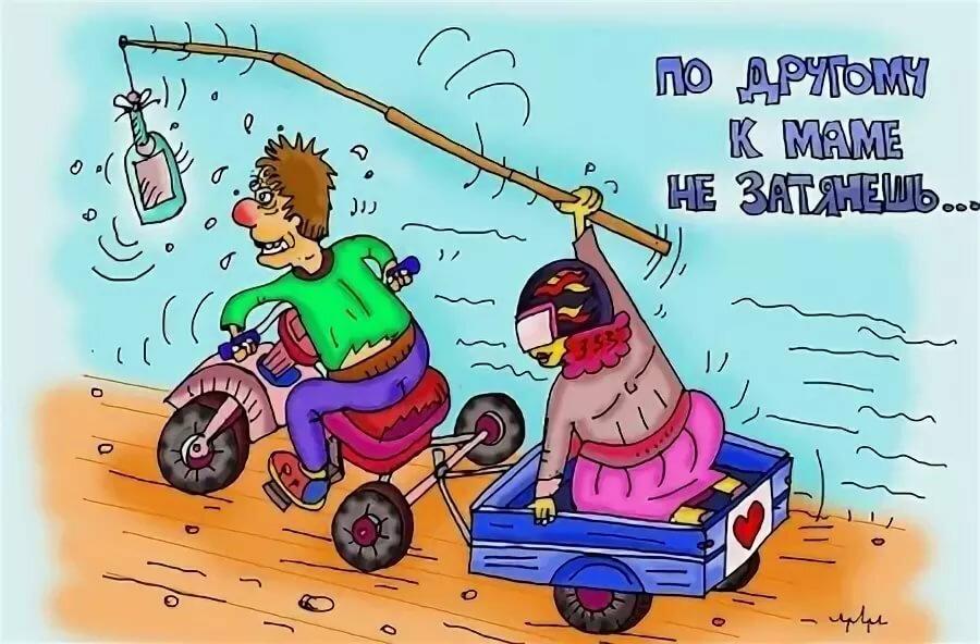 Смешные картинки про начало зимы конезавод черняховске