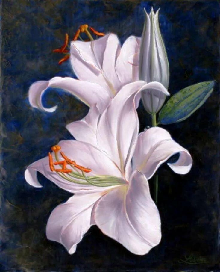Деду, открытки рисованные с лилиями