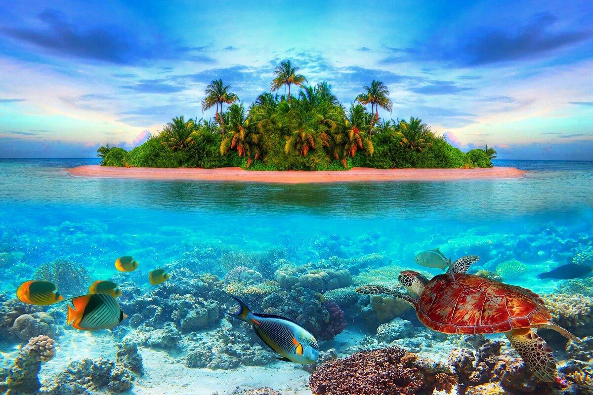 Картинки море красивые на телефон