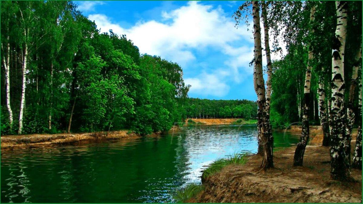 поздравил картинки анимация вода природа лес связать что-нибудь