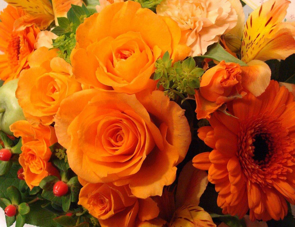 каком картинки с оранжевыми розами жалко вам