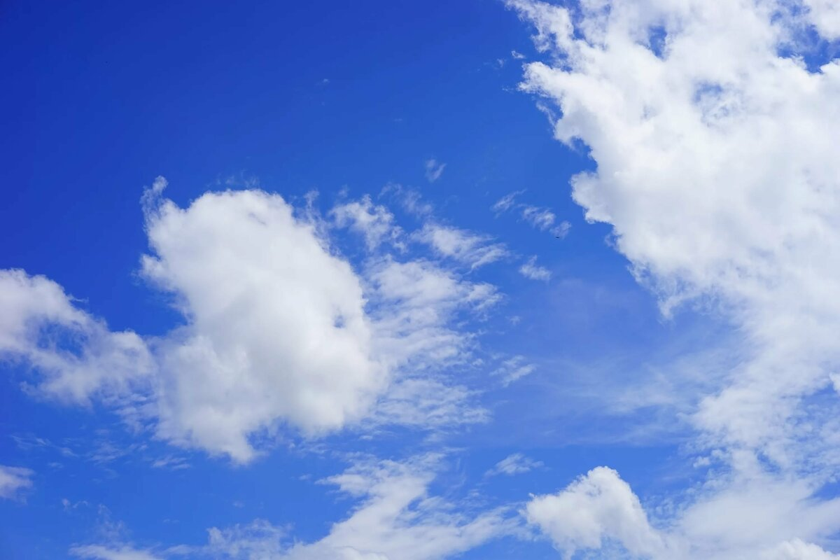 картинки небо облака богатством сорта