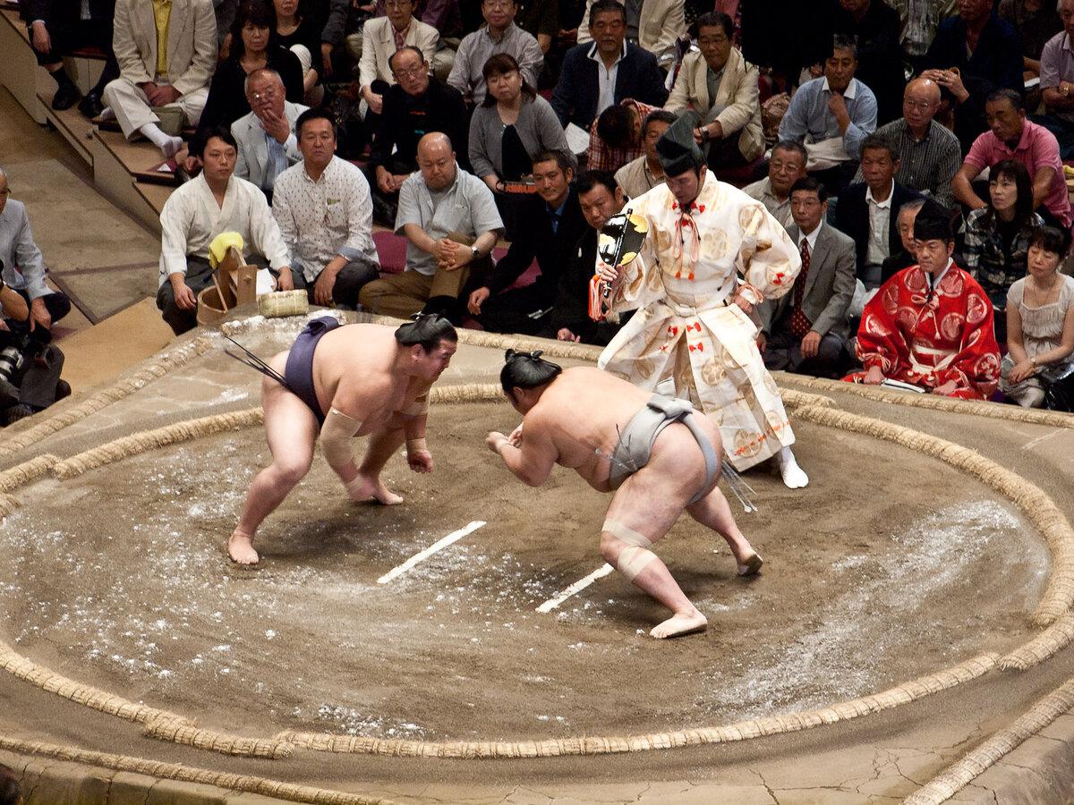 нет картинки сумо каратэ как наградная