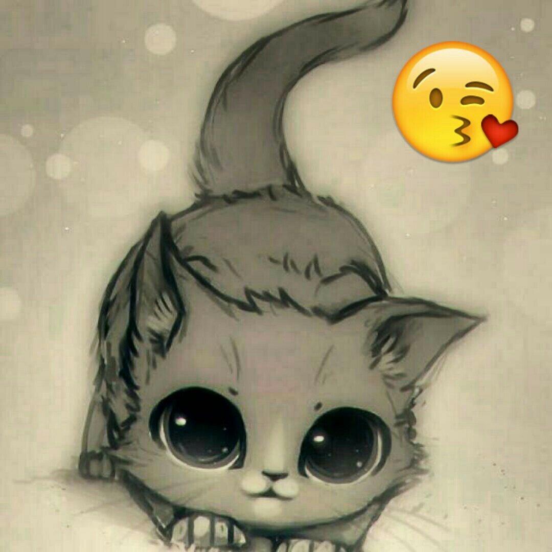 Милые картинки коты для срисовки