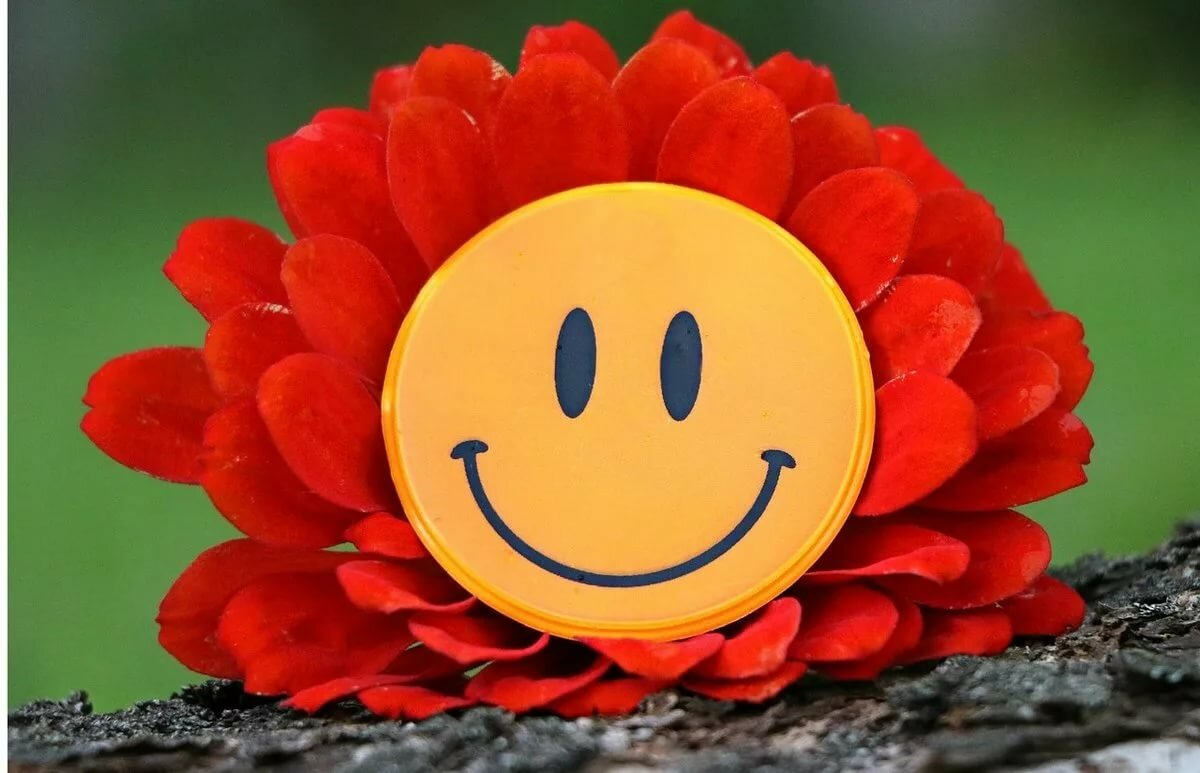 год картинка цветы улыбаются ресурсы востребованы