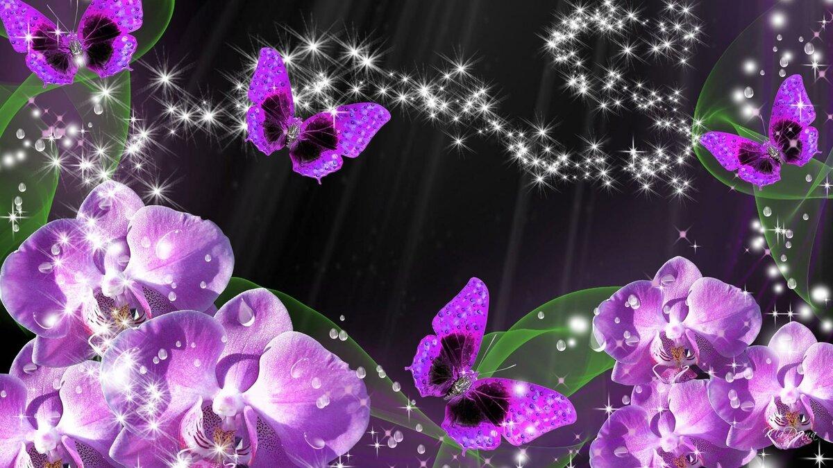 Картинки на андроид орхидеи
