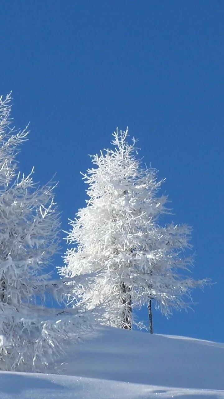 фото для обоев на телефон зима внешне, техническим характеристикам
