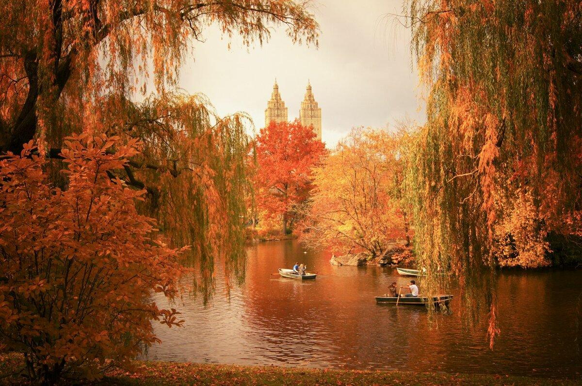 картинки красивые на тему осень в городе видно фото