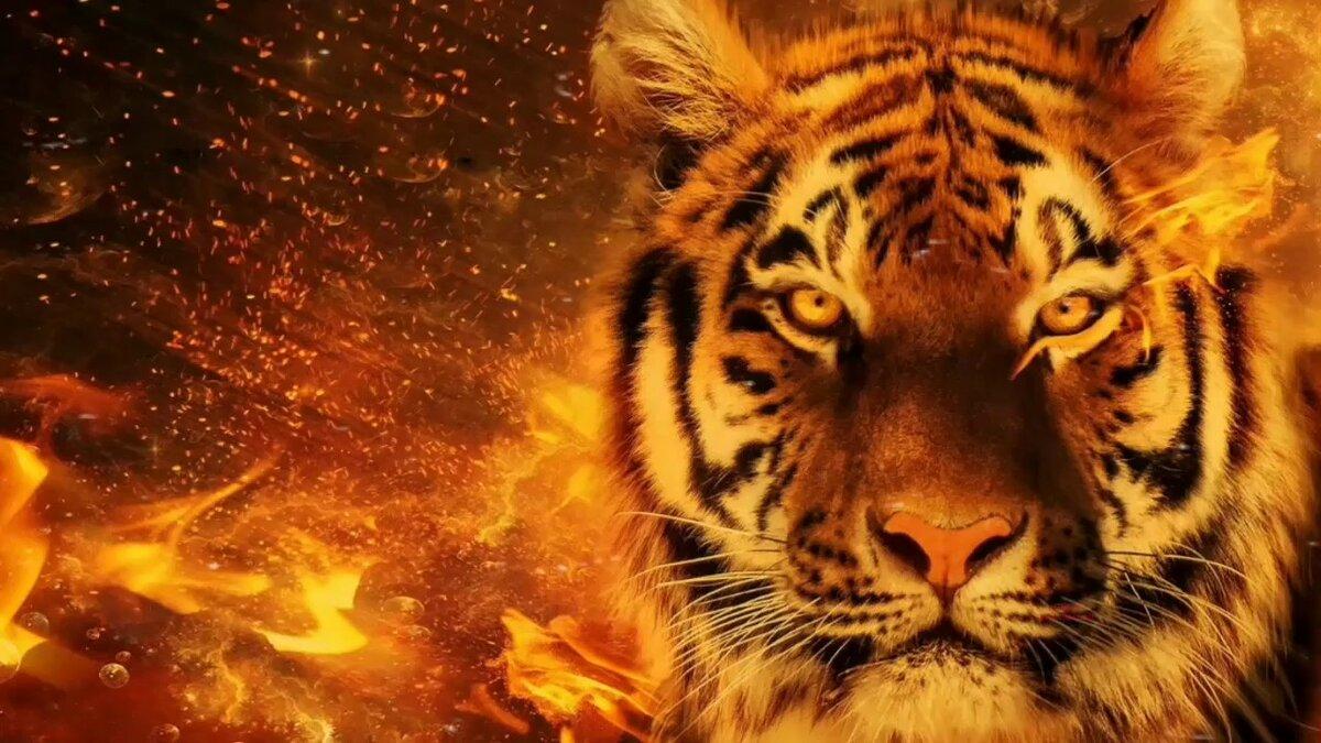 мангал картинки огня и тигров услуги