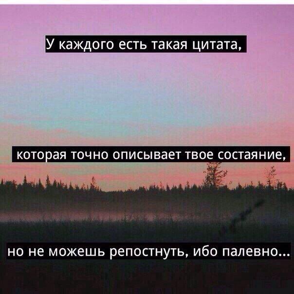 Фразы с картинками для вконтакте