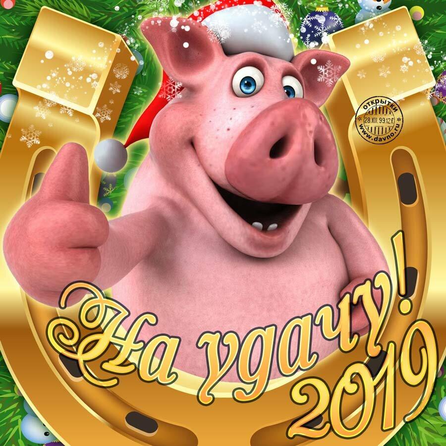 Поздравительные открытки с годом свиньи 2019