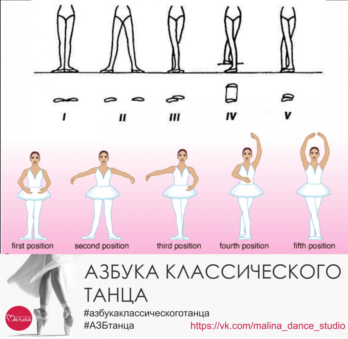 конюшню позиции в балете названия с картинками детям нарисовать