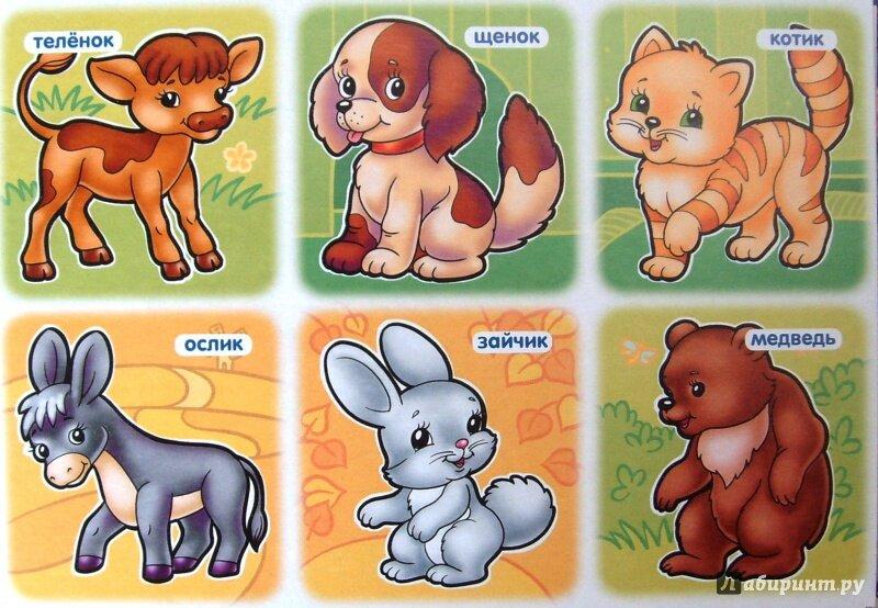 Картинки животных с названиями для самых маленьких
