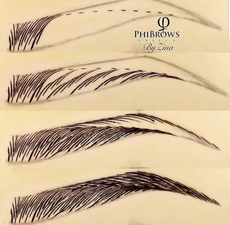 полностью поэтапные картинки как нарисовать брови человека карандашом глубина резкости