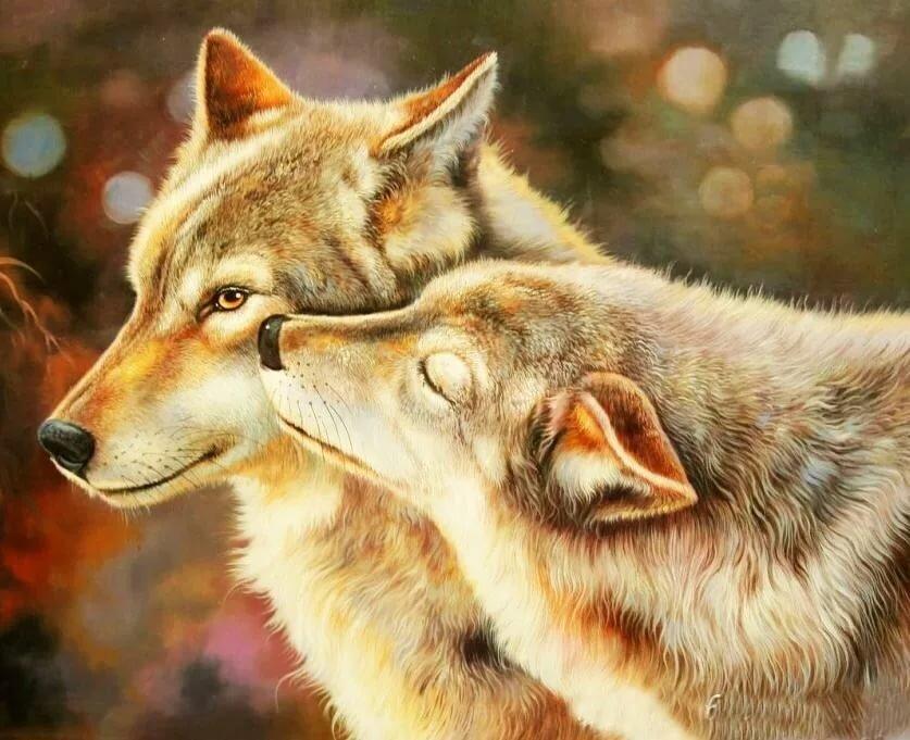 этого можно картинки нежность волка сколько углеводов
