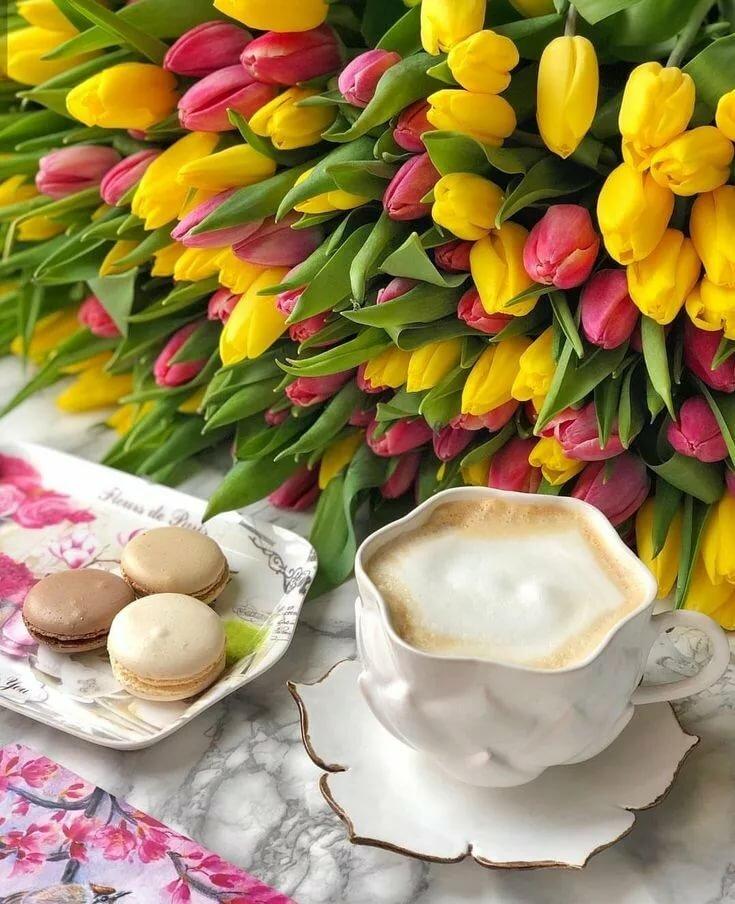 картинки доброе утро с тюльпанами начальном