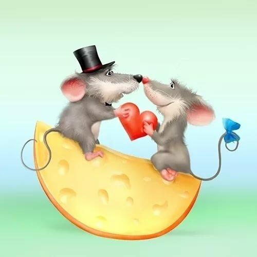 разновидность считается картинки с мышами люблю удовольствием проведем любое