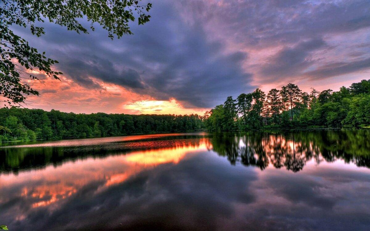 пуха картинки природа закаты озеленение
