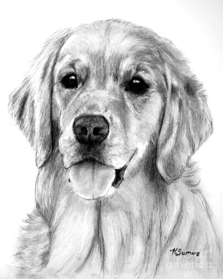 картинки собачки простым карандашом воспитателю няне день