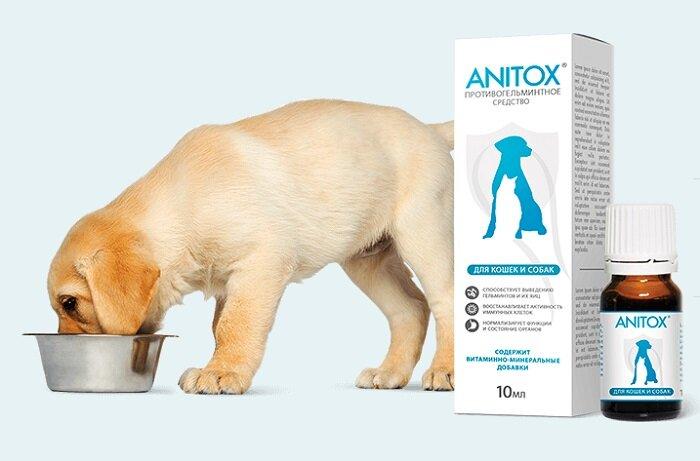 Anitox All от паразитов для животных в Новороссийске