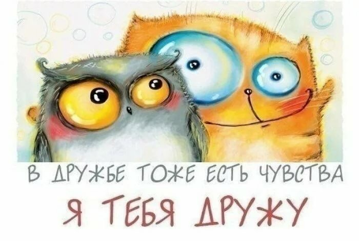 Прикольная открытка о дружбе, цветами цитатами