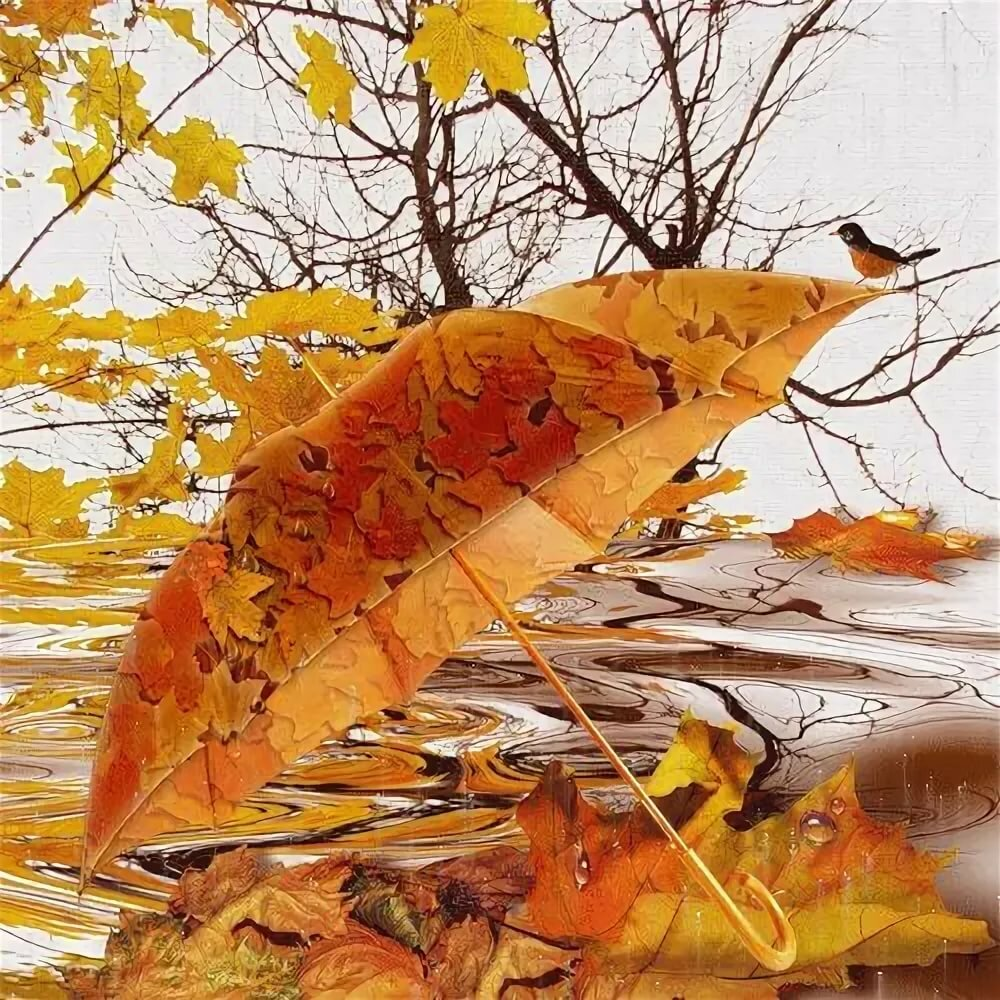 Картинки анимация дождь осенью, юбилей макет