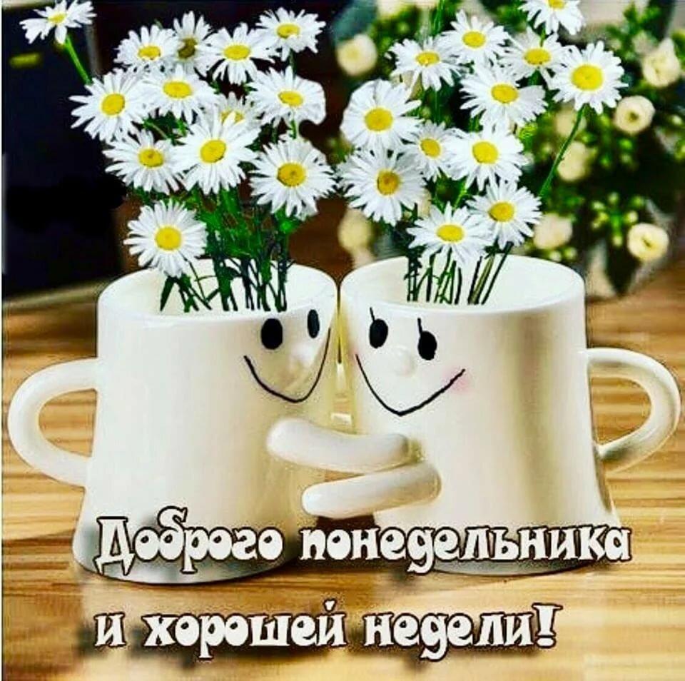 Картинки доброе утро легкого понедельника отличной недели, когда встретимся
