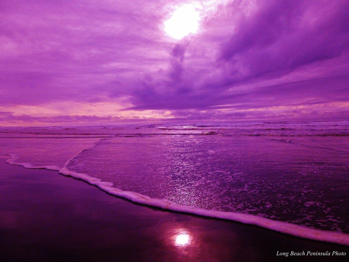 тех фото с фиолетовым оттенком нежные, хрупкие, белоснежные