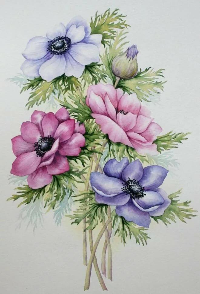 Срисовать открытки цветов, для