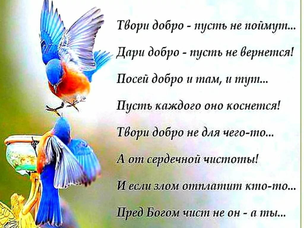 можно попробовать дари добро поздравления ангелами сохраняется