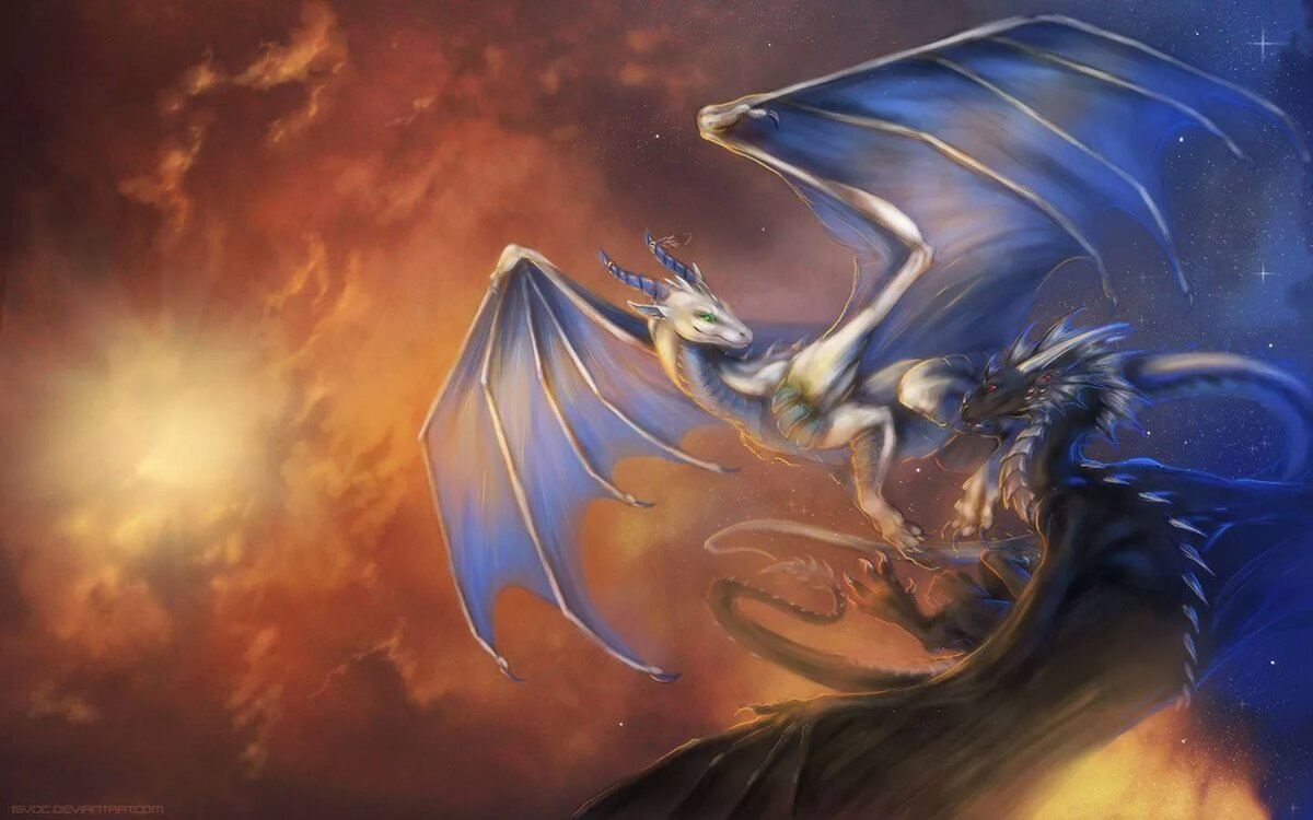 Fantasy Dragon Wallpaper Mythology Дракон
