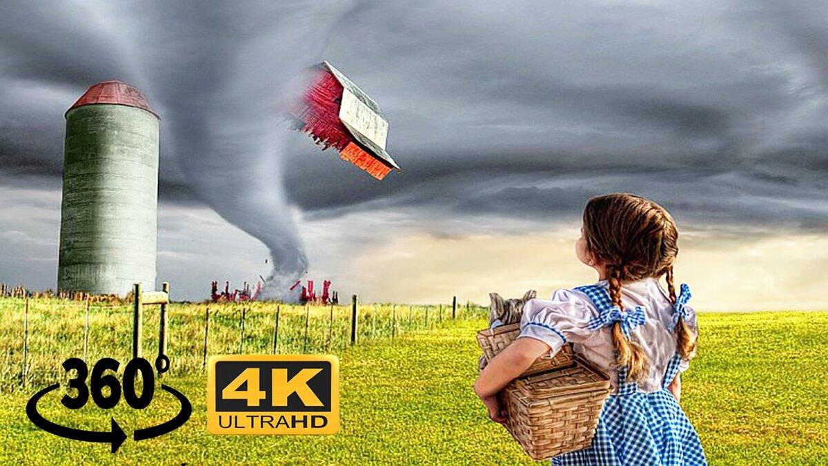 Смешные картинки торнадо