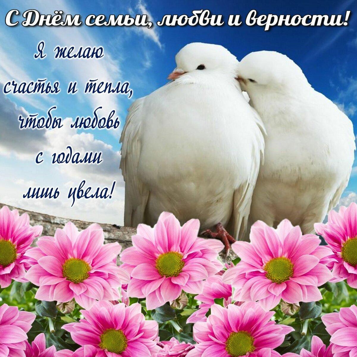 Красивые открытки поздравления с днем семьи любви и верности