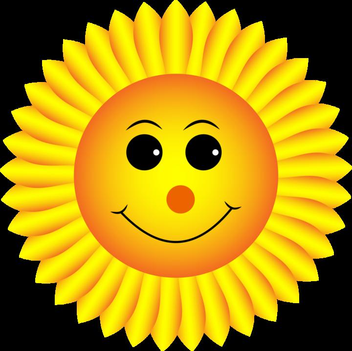 Большая картинка солнышко