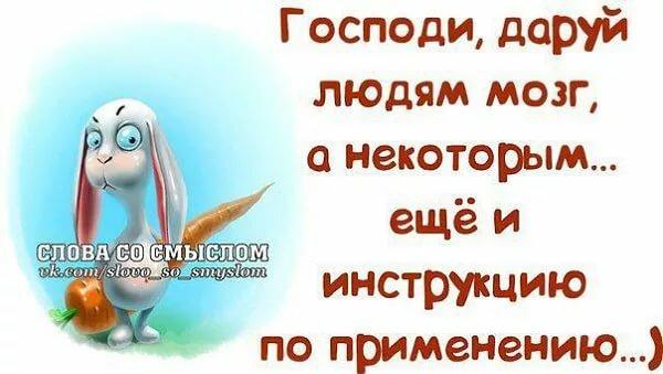 честный статусы для ватсапа смешные в картинках русская рать