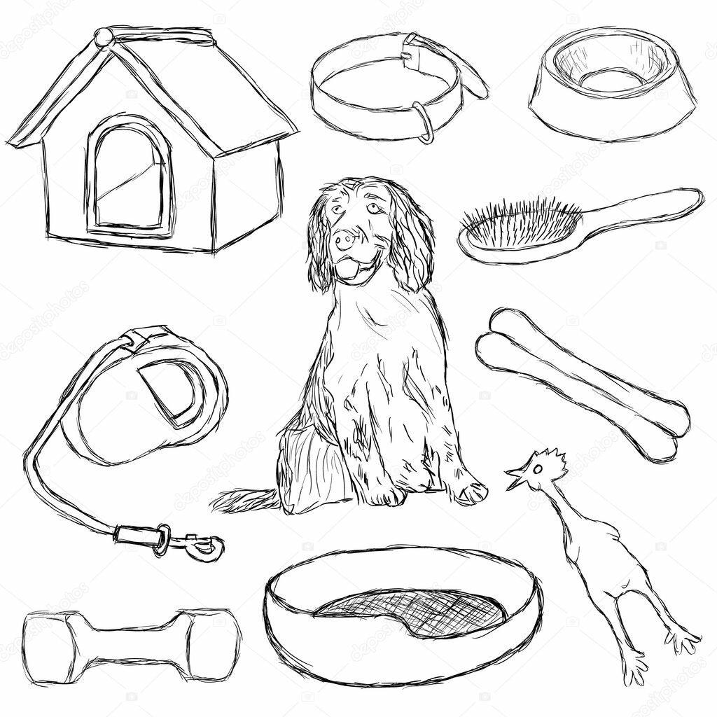 нас предметы для ухода за собакой картинки только сделают