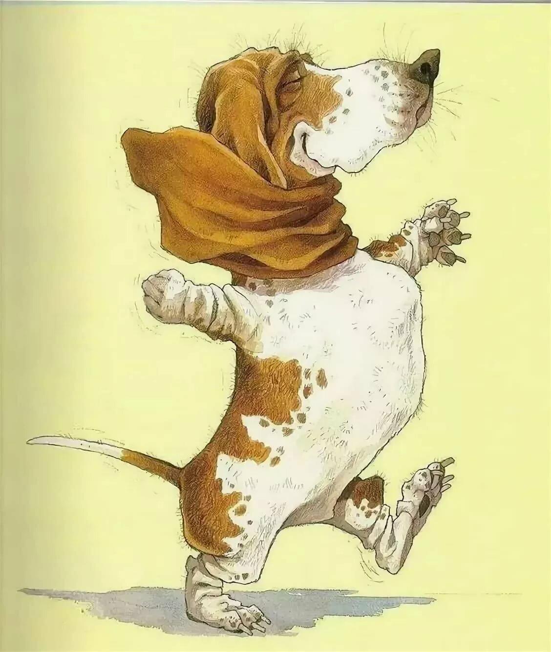 открытки с собаками приколы