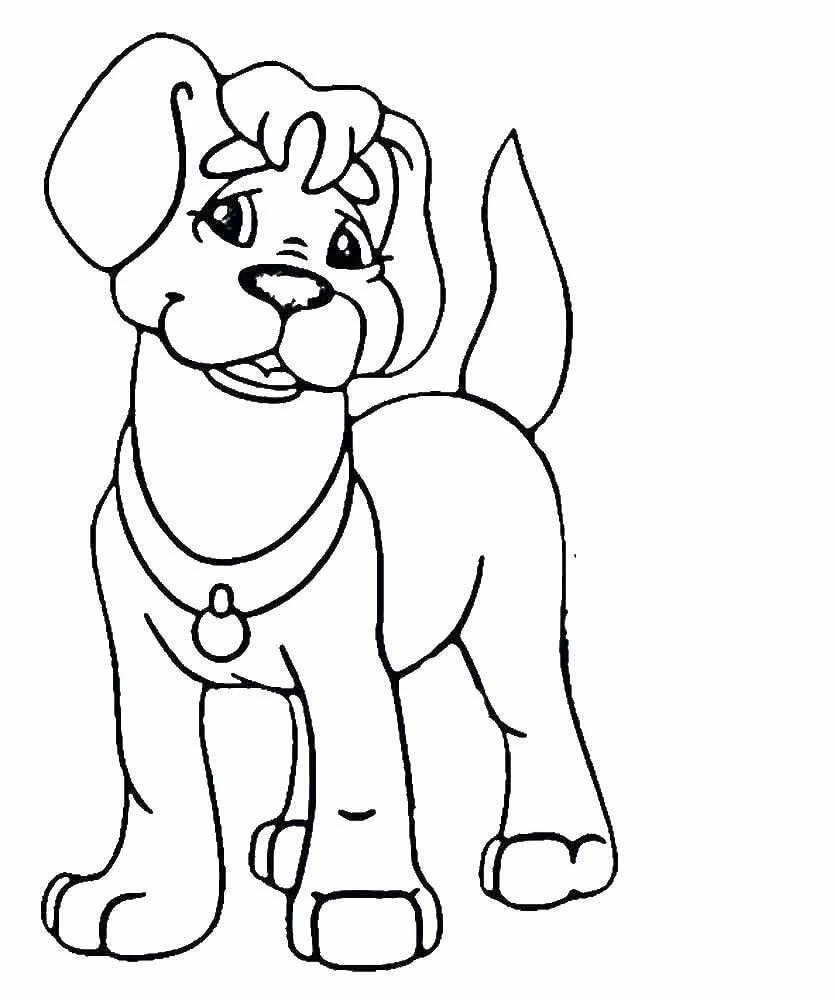 собак рисунок раскраска они охотно рожают