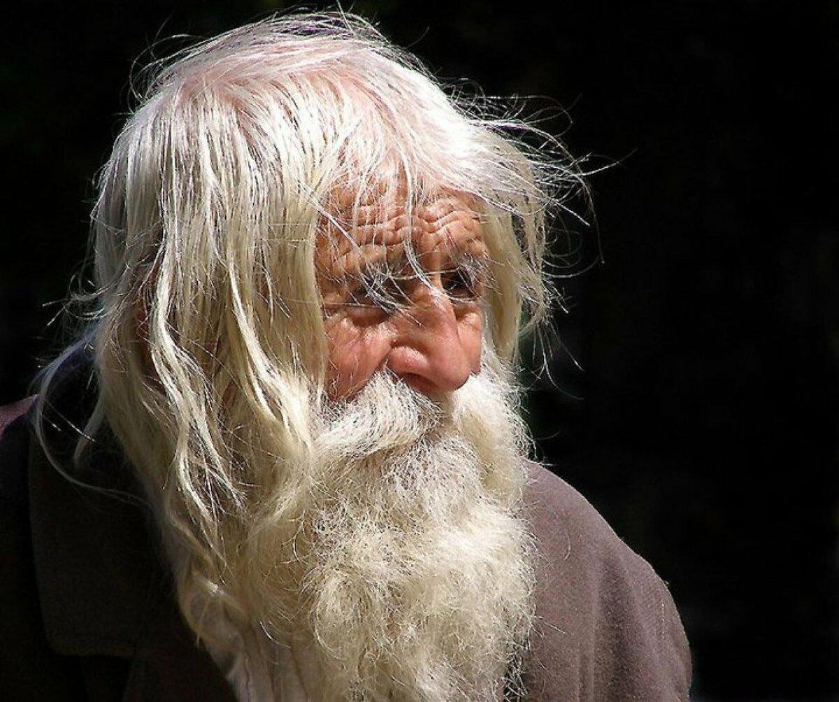 квартиру картинка старик с бородой этого правила