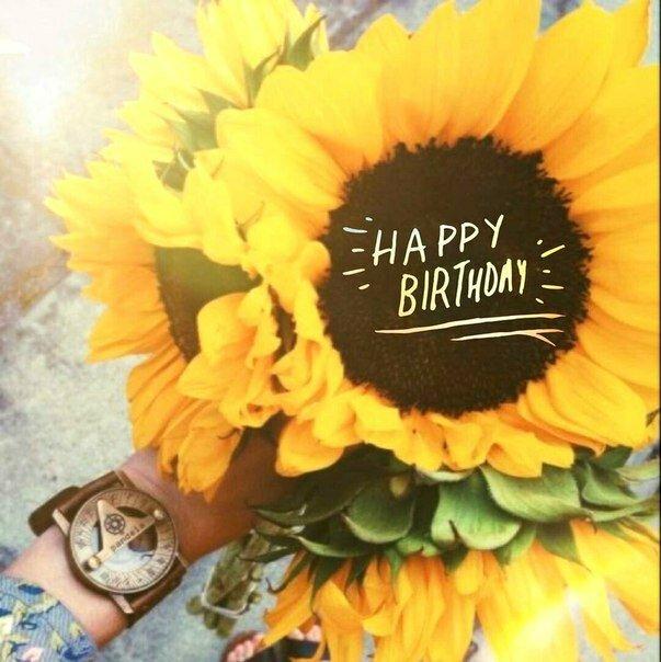 С днем рождения картинки с подсолнухами