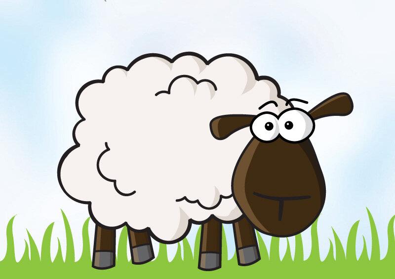 Выходи работу, овца картинки для детей нарисованные